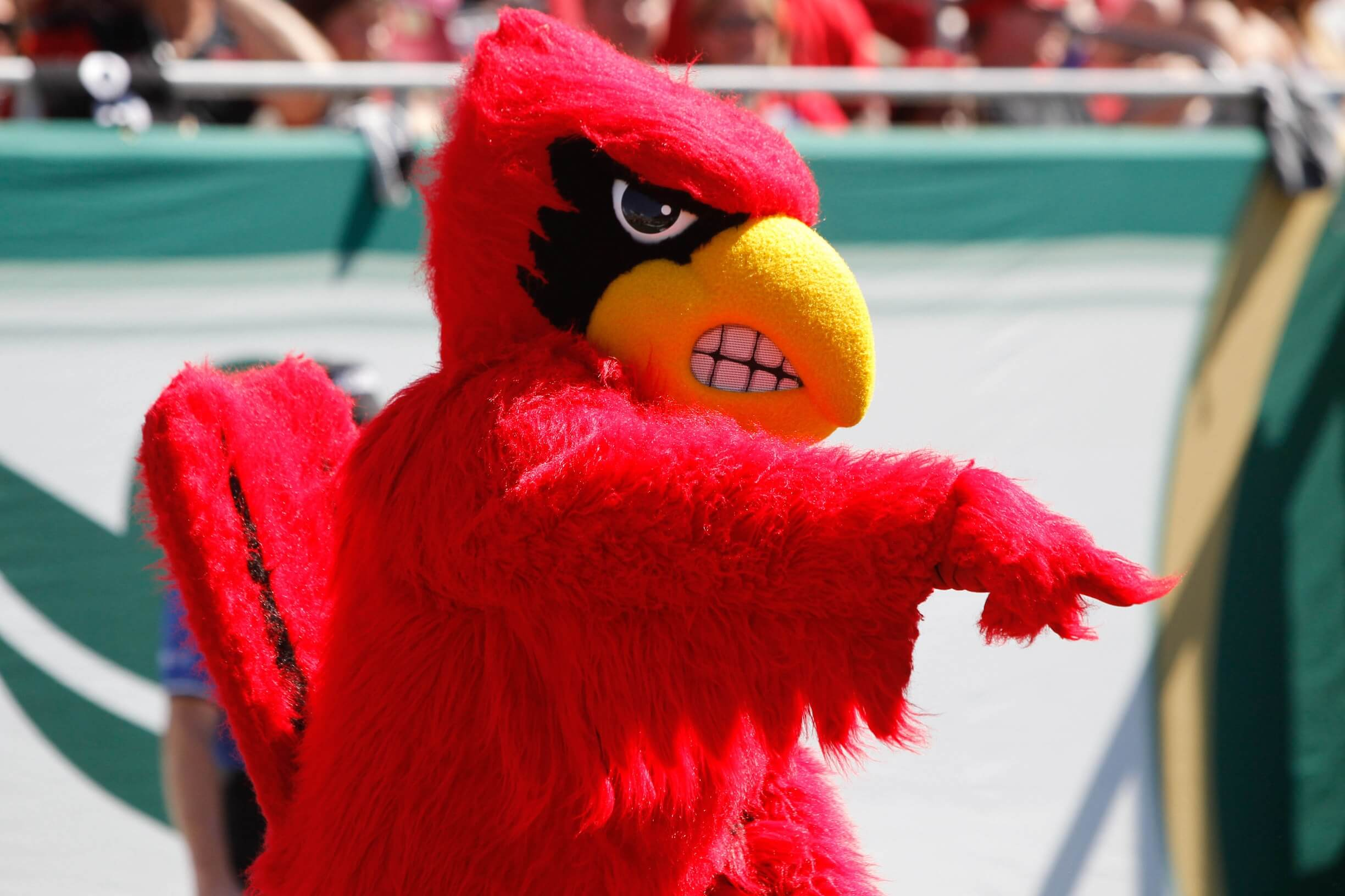 university-of-louisville-sports-management