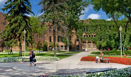 Minnesota State University - Sport Management