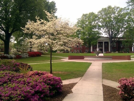 Newberry College - Bachelor's Sports Management Degree 2016