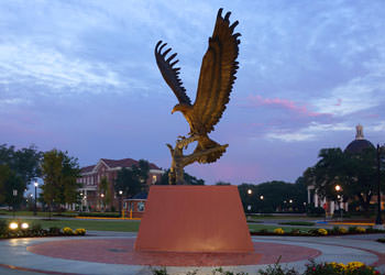 University Of Southern Mississippi Sports Management